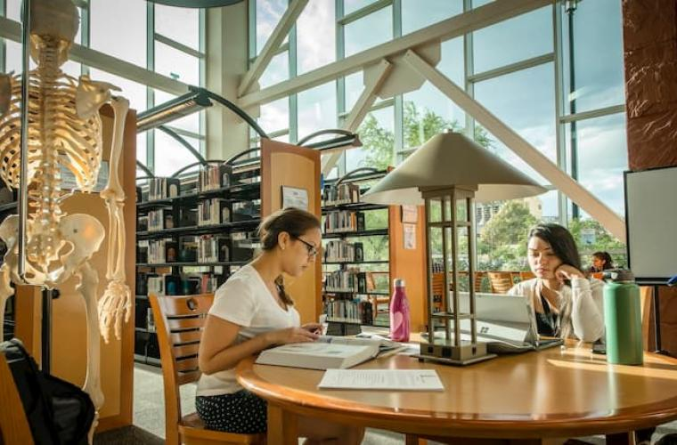 Students sitting in the Charleston campus library