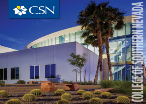 CSN Building with palm trees
