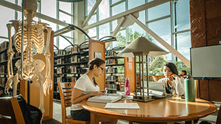 Students in the CSN library